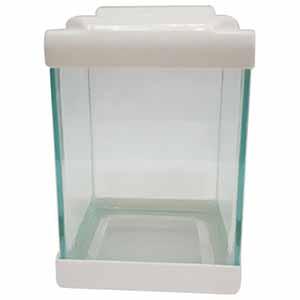 خرید 33 مدل آکواریوم ماهی خانگی [شیک] و باکیفیت با قیمت ارزان
